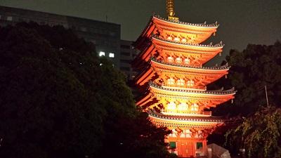 東長寺の灯明ウォッチング2