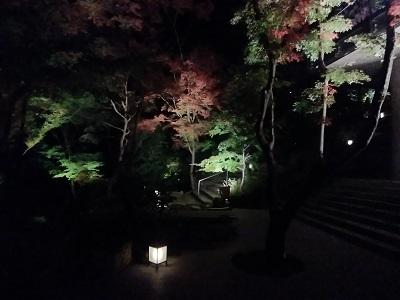 竈門神社の紅葉ライトアップ1