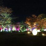 舞鶴公園福岡城跡ライトアップ