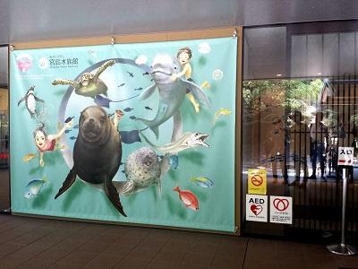 宮島水族館の料金は?前売り券はどこで買える?チケットの割引はある?