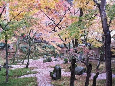 福岡の秋のおすすめ記事