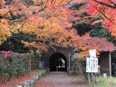 太宰府観光のお役立ち記事