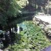 南阿蘇の白川水源の水汲みと観光