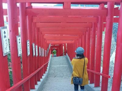 元乃隅神社の鳥居のトンネル