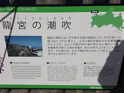 龍宮の潮吹(りゅうぐうのしおふき)の説明