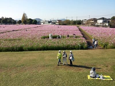 キリンビール福岡コスモスパノラマ展望台からの眺め