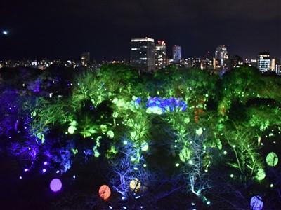 チームラボ福岡城跡光の祭2019-2020の天守台から2