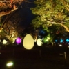 チームラボ福岡城跡光の祭2019-2020