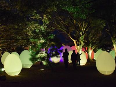 チームラボ福岡城跡光の祭2019-2020の卵のオブジェ1